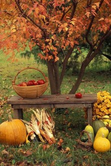 Most Beautiful Fall Decorating Ideas That Will Make More Perfect Home In This Fall 25