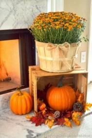 The Best Decoration That Will Enhance Your Home In This Fall 14
