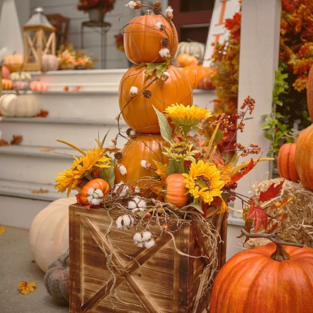 The Best Decoration That Will Enhance Your Home In This Fall 17