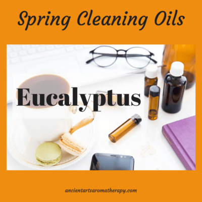 Spring Cleaning – Eucalyptus Essential Oil