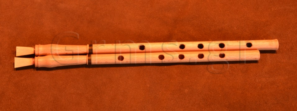 Εικ. 47α. Ο αυλός της Δάφνης ανακατασκευασμένος (α).