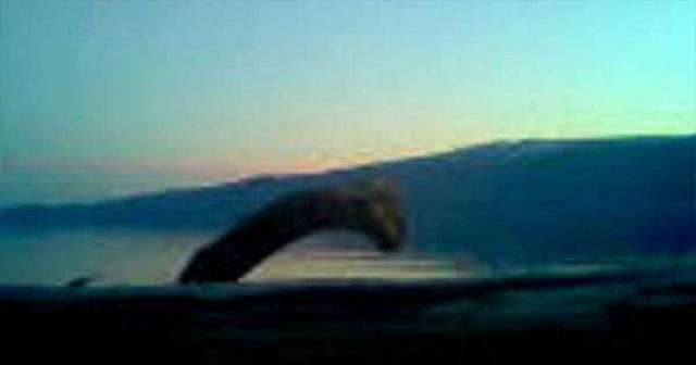 The Norwegian lake monsters