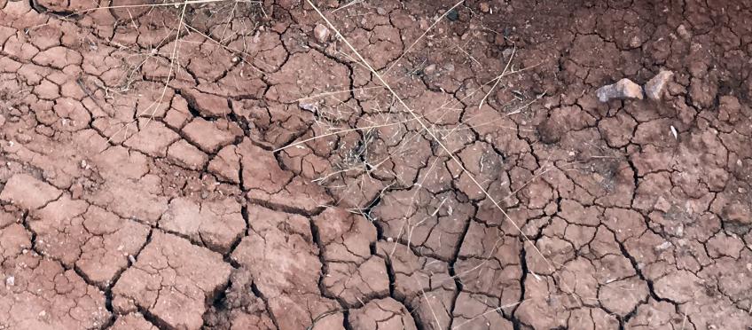 cracks in natural clay