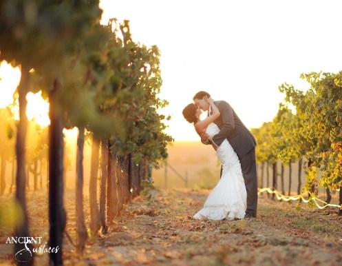 silver-horse-winery-wedding-37-copy