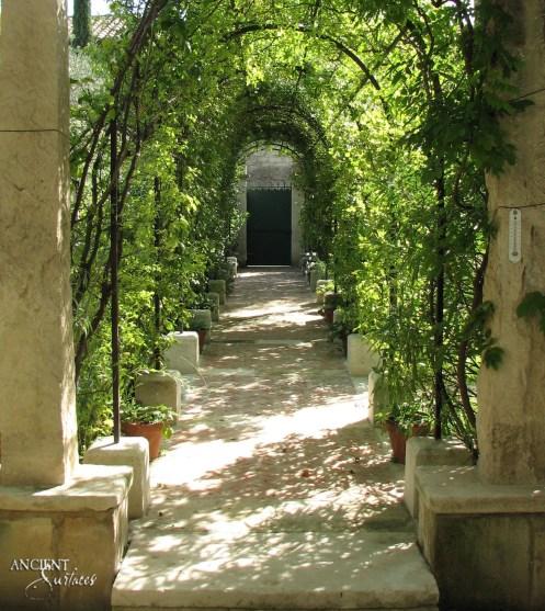 outdoor-garden-vineyard-provencal-decor