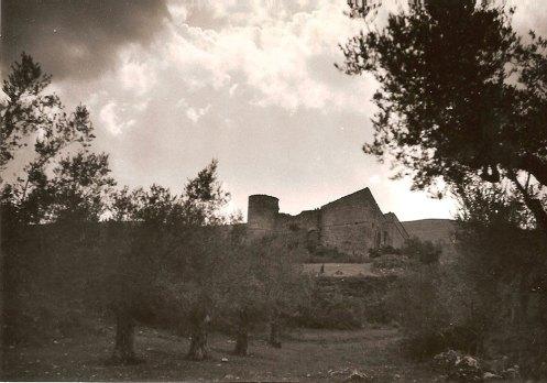 Castle di Procopio before respiration-2