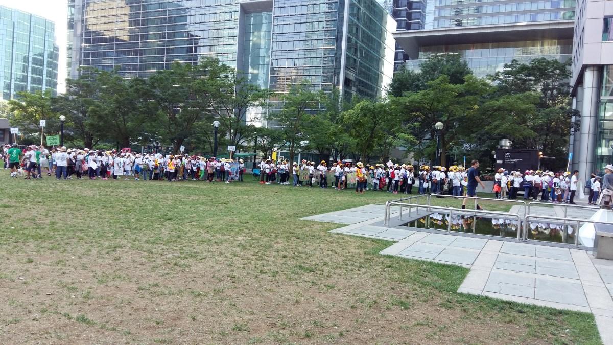 1,500 strong ANCOP Walk participants