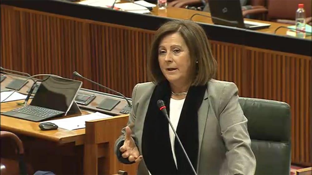 Consejera María José Sánchez Rubio Parlamento