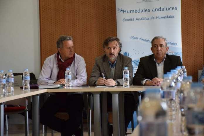 Comité andaluz de humedales