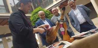 Concurso nacional cortadores de jamon