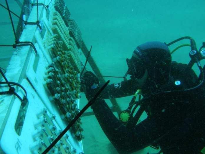 Restos arqueológicos subacuáticos
