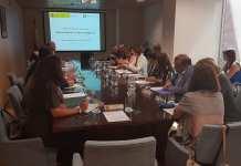 Foto reunión DTIs
