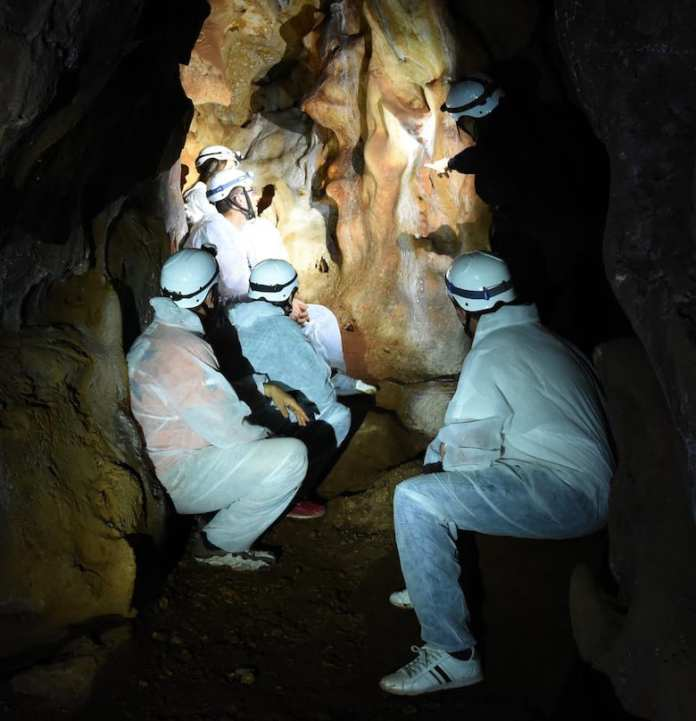 Visita Sala del Dosel-Mano Paleolitica