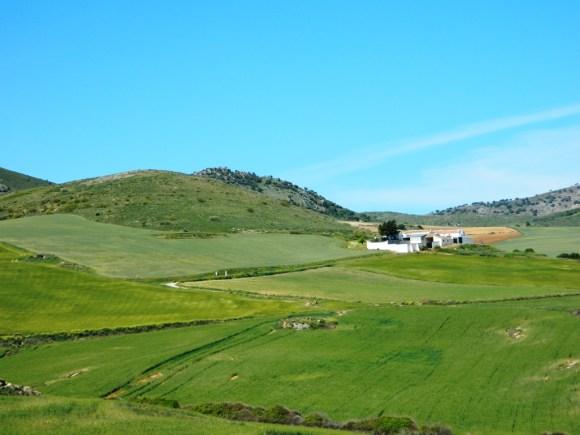 Cadice_Andalusia_Cosa vedere_ Cortijo_Cadiz_Andalucia
