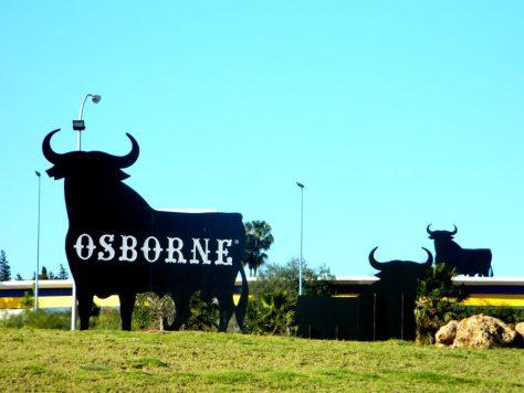 Cosa vedere el puerto santa maria_ osborne toro