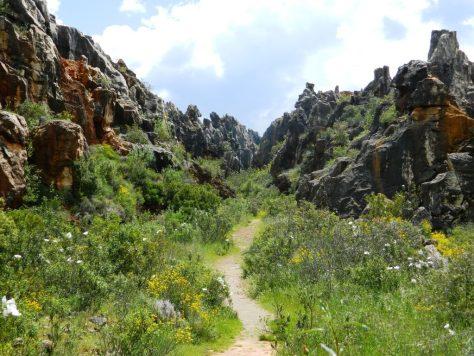 cosa vedere sierra norte siviglia cerro de hierro andalusia