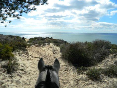 spiaggia_huelva_cavallo_andalusia