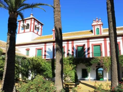 olio_turismo_siviglia_hacienda
