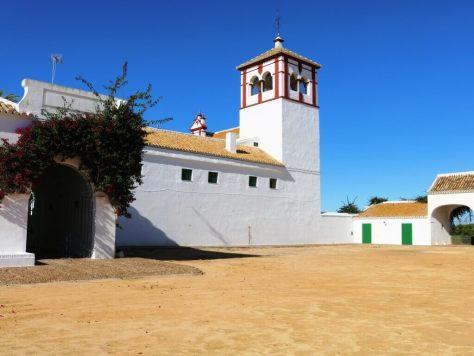 olio_turismo_siviglia_hacienda_cortile