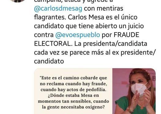 Comunidad Ciudadana acusa a Jeanine Añez de hacer campaña en horario laboral
