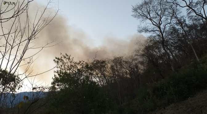 Se registran incendios en Pananty APG y Caipitandy