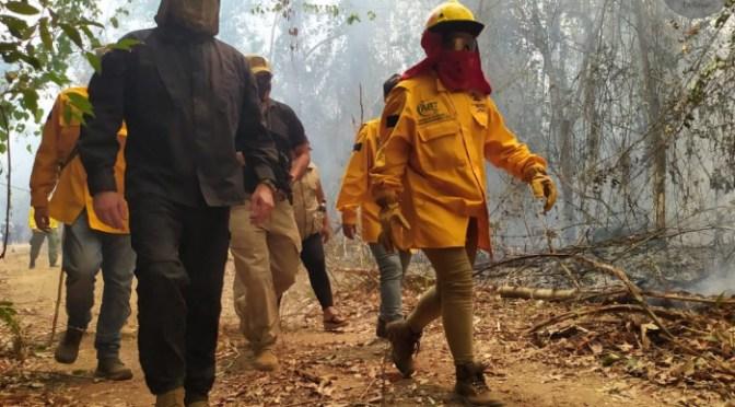 Reportan que se extinguió el incendio en el parque Noel Kempff