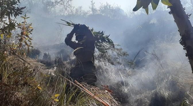Incendios en Monteagudo no dan tregua y rebasan la capacidad de las autoridades