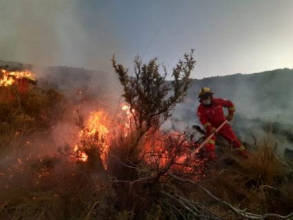 Incendio en Mizque consumió 300 hectáreas de pajonales y árboles