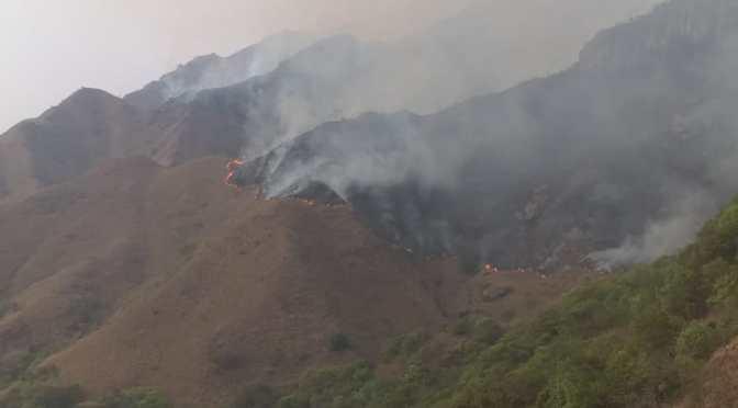 Incendio de Machareti ingresa al Aguaragüe: Piden ayuda aérea para apagar el fuego