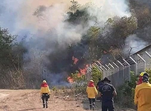 Enviaron bomberos de Villa Montes para ayudar a sofocar incendio en Machareti