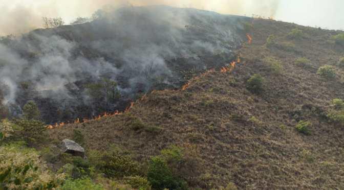 La lluvia ayudó a reducir la gravedad de incendios en Tarija y sofocar algunos focos de calor