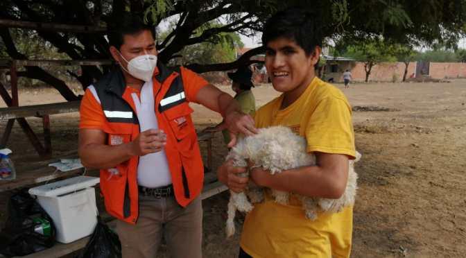 Reactivan campaña antirrábica en el municipio de Tarija