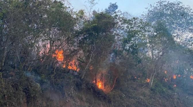 Suman 443 procesos administrativos y 15 procesos penales por incendios en el país