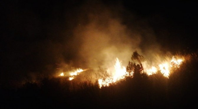Controlan dos incendios que consumieron 15 hectáreas en el Parque Tunari