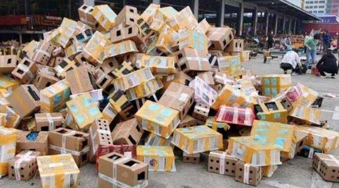 Macabro hallazgo en China: 4.000 perros, gatos y otros animales muertos dentro de cajas en un depósito
