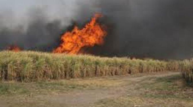 Se gestiona para que la ABT ponga oficina en Bermejo para controlar incendios