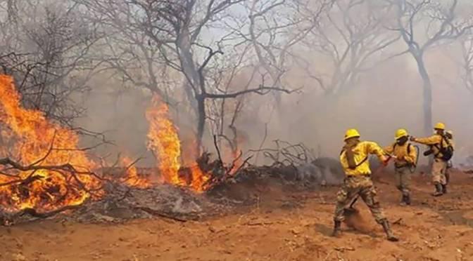 Conade exige declarar desastre natural por incendios sin dictar estado de excepción