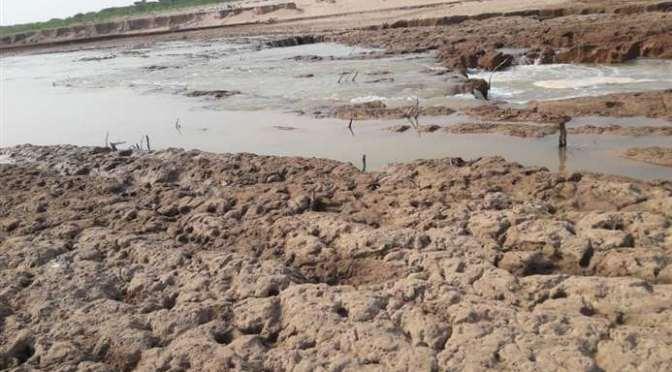 Incendios y deforestación impactan en caudales del Pilcomayo y otros ríos