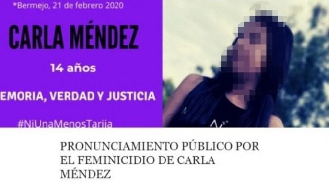 Aseguran que menores de edad son autores del crimen de Carla Méndez