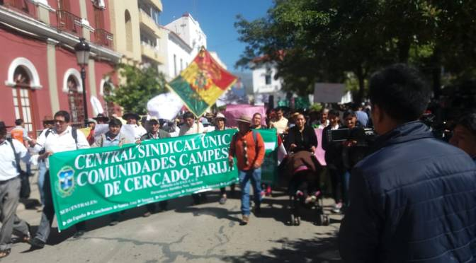 Cardozo: Campesinos pueden elegir dos representantes directos en la ALDT y el Concejo