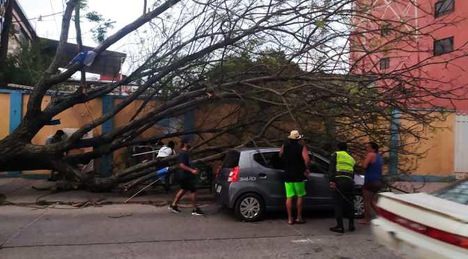 Fuertes vientos huracanados del sur hicieron estragos en Yacuiba