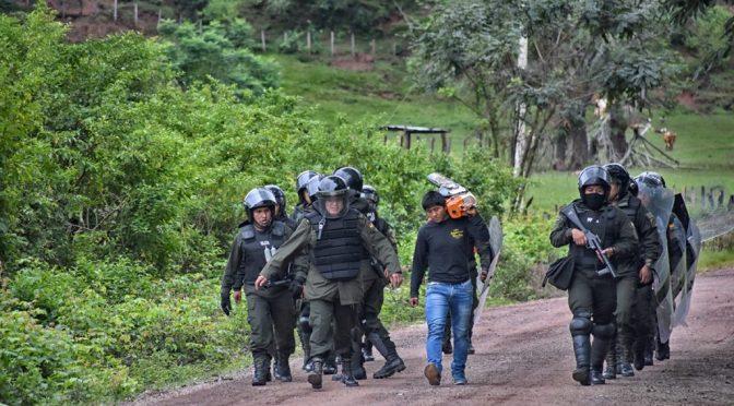 Tariquía «continúa en peligro», según informe de Diputados