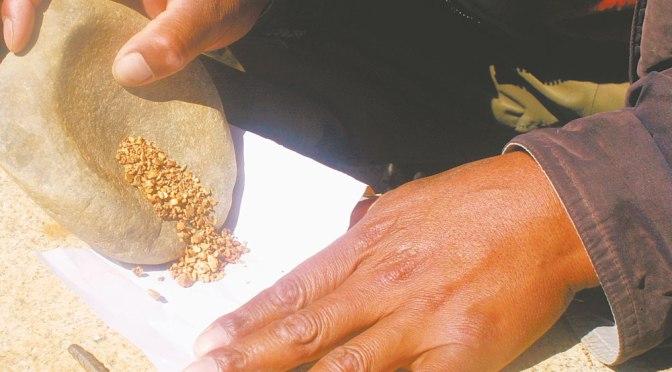 Ministro de Minería estima que contrabando de oro afecta unos mil millones de dólares al año al país