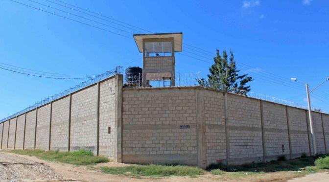 Denuncian que policías hacen apuestas de peleas de reos en la cárcel de Morros Blancos