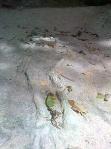 Khao Kanabnam cave 8