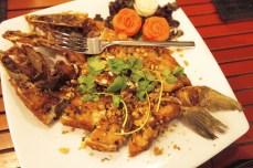 fish at Kantary Bay Resort