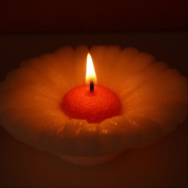 Velká plovoucí svíčka, Gerbera bílo-oranžová, Andělská svíčkárna, Big floating candle, flower Angels candles 03
