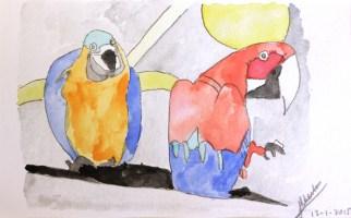 Papegaaien 2