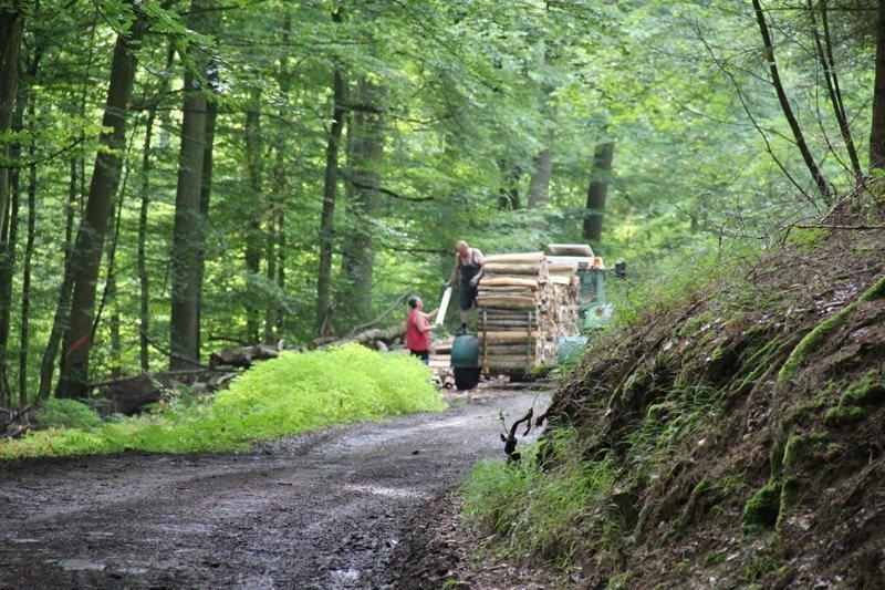 Pfalz rheinland nackt wandern 2017 Nacktwandern