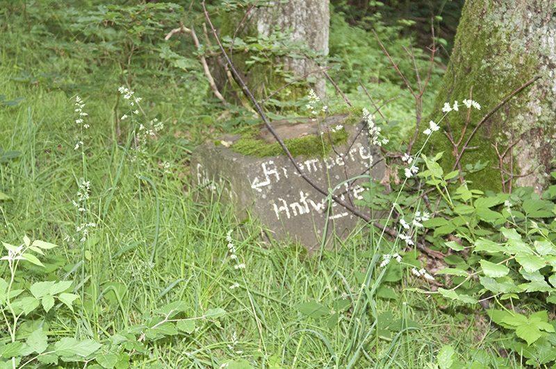 Hier steht ein Bild mit dem Titel: Bei meiner ersten Tour auf den Aremberg erhielt dieser Stein den Namen Siebzehn-Zecken-Stein. Warum wohl?
